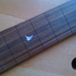 ebony fingerboard